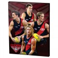 ESSENDON PLAYER CANVAS AFL064BE